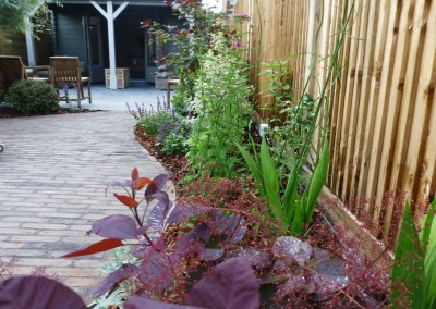 Carol Bridges townhouse garden project