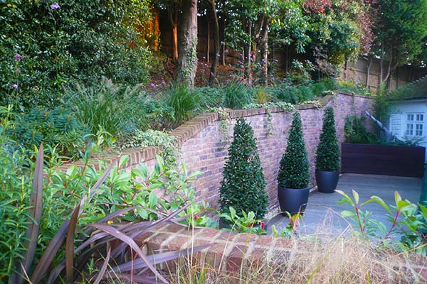 Carol bridges garden designer reigate surrey for Garden design reigate