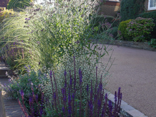 Front Garden Planting, Reigate